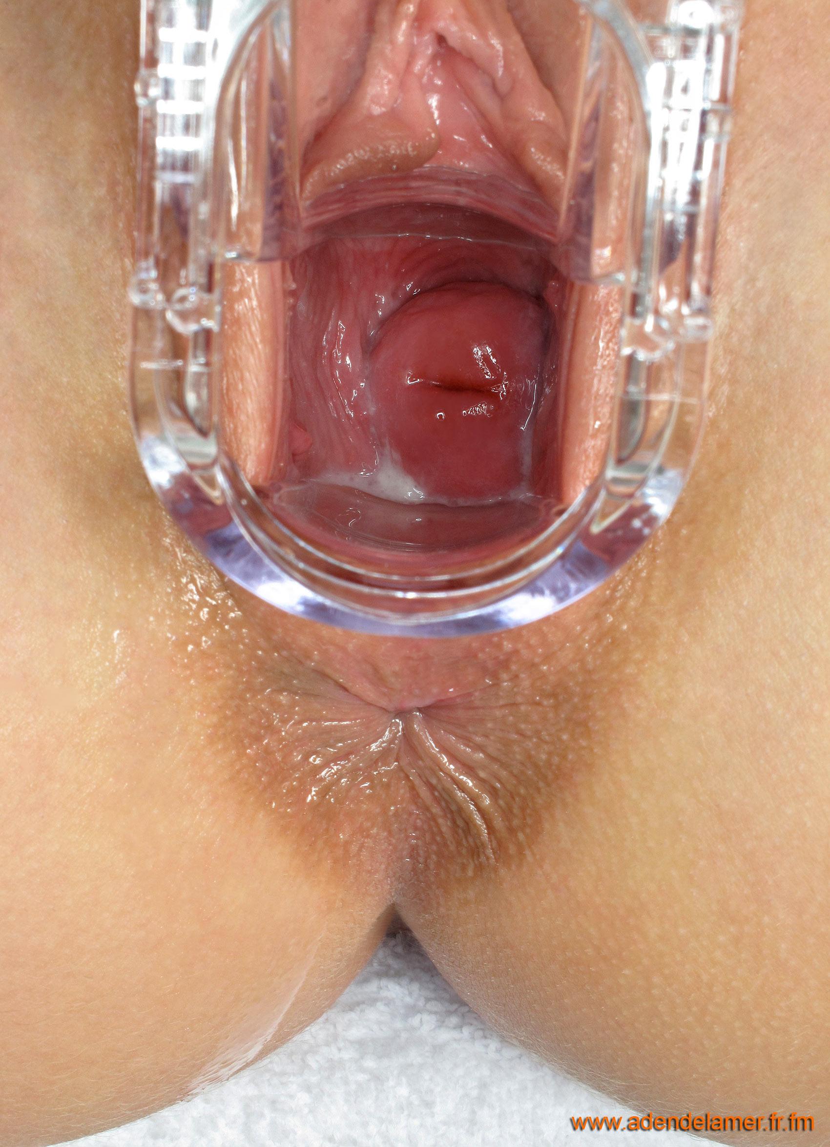 Как устроено женское влагалище изнутри